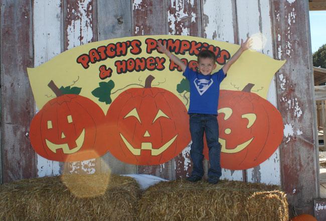 carter-pumpkin-patch