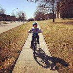 My Friday Five – Spring has sprung!