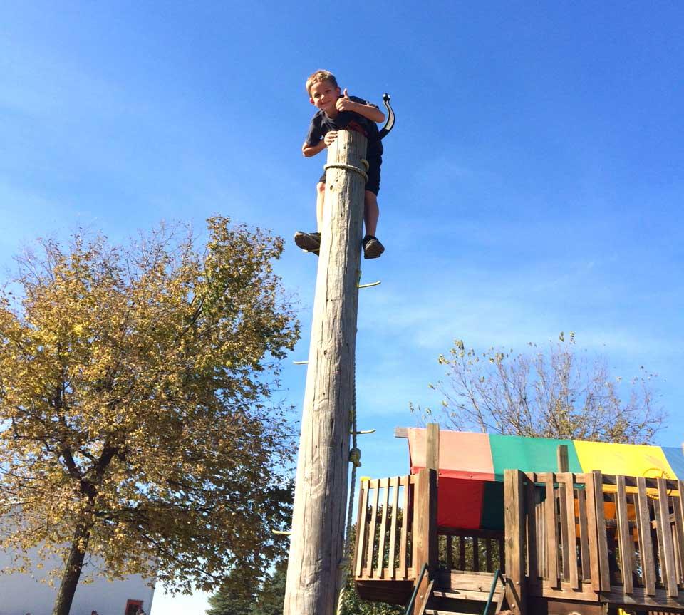 pole-climber