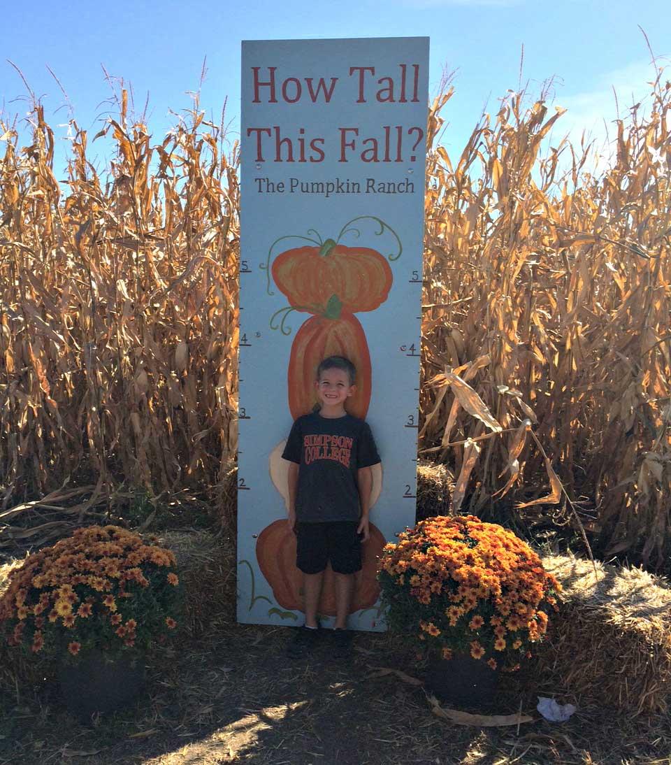 pumpkin-ranch-height-chart