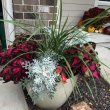Make a Shade Loving Container Garden