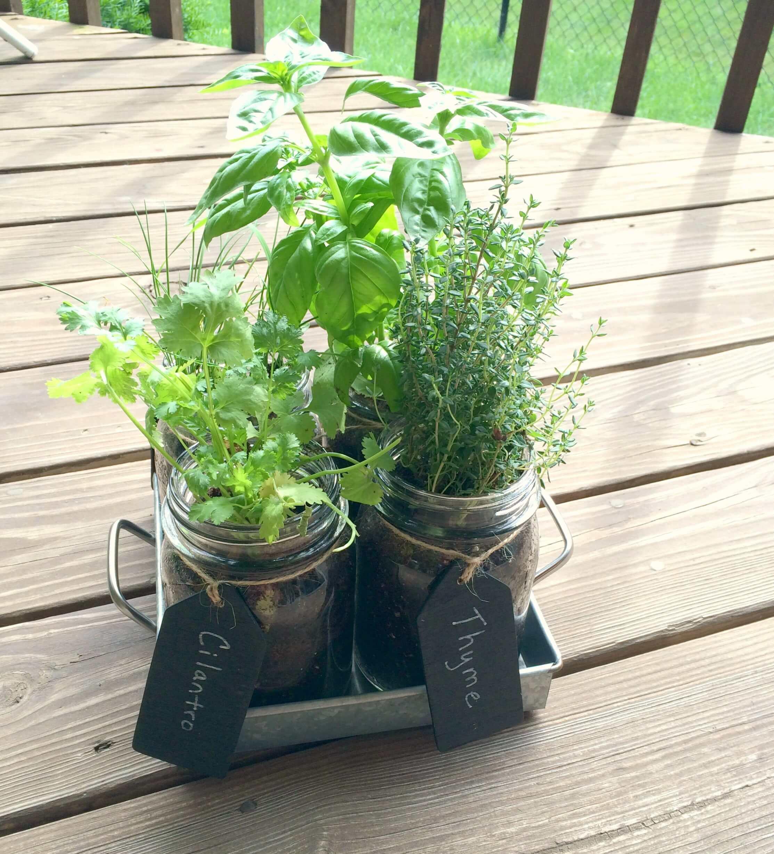 Mason Jar Herb Garden