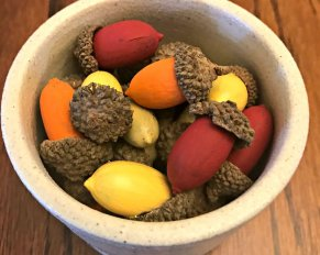 Painted Acorns - Bring fall indoors with these easy to make painted acorns. Put them in a fall themed bowl or scatter them around your Thanksgiving table for a natural fall accent.